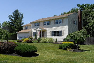 Randolph Twp. Single Family Home For Sale: 21 Beaver Dam Rd