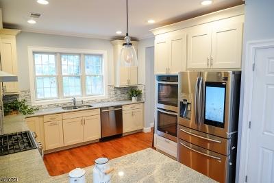 Livingston Twp. Single Family Home For Sale: 9 Spalding Dr