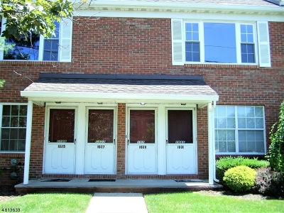 Scotch Plains Twp. Condo/Townhouse For Sale: 1029 Cellar Ave