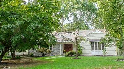 Millburn Twp. Single Family Home For Sale: 25 Sherwood Rd