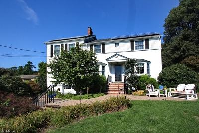 Livingston Twp. Single Family Home For Sale: 66 Hillside Ave