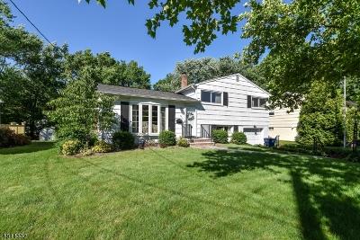 Fanwood Boro Single Family Home For Sale: 79 N Glenwood Rd