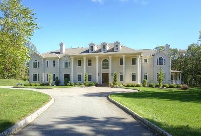 Mendham Boro, Mendham Twp. Single Family Home For Sale: 3 Cramer Ln