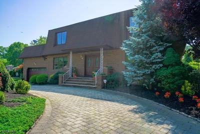 Clark Twp. Single Family Home For Sale: 11 Ginesi Drive