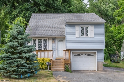 Parsippany-Troy Hills Twp. Single Family Home For Sale: 36 Lake Shore Dr