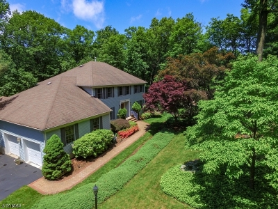 Randolph Twp. Single Family Home For Sale: 15 Knollwood Ter