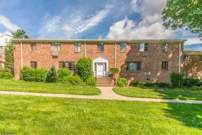 Springfield Twp. Condo/Townhouse For Sale: 61-D Troy Dr Bldg 8