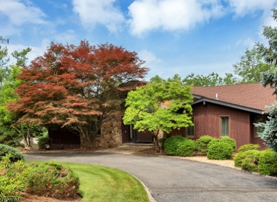 Livingston Twp. Single Family Home For Sale: 4 Notch Hill Dr