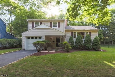 Morristown Town Single Family Home For Sale: 46 Elliott St