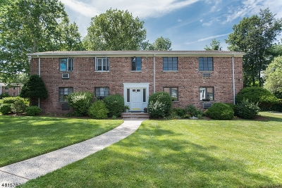 Springfield Twp. Condo/Townhouse For Sale: 107-C Troy Dr Bldg 15