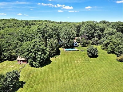 Bedminster Twp. Single Family Home For Sale: 300 Old Farm Rd