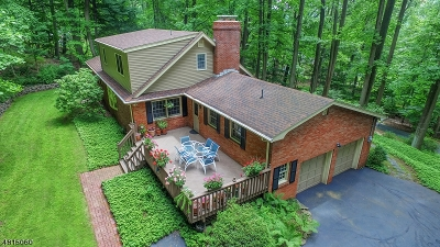 WATCHUNG Single Family Home For Sale: 171 Old Somerset Rd