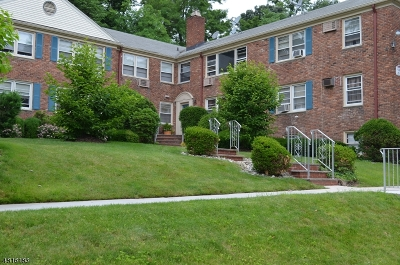 West Orange Twp. Condo/Townhouse For Sale: 24 Hutton Ave #29