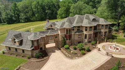 Denville Twp. Single Family Home For Sale: 318 Franklin Rd