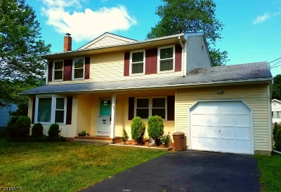 Parsippany-Troy Hills Twp. Single Family Home For Sale: 100 Mohawk Ave