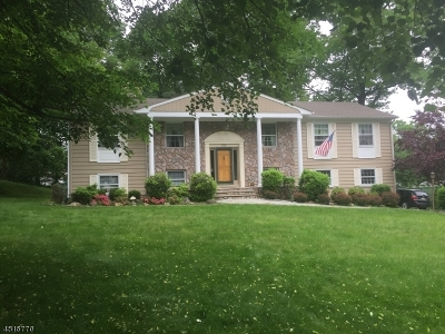 Springfield Twp. Single Family Home For Sale: 105 High Point Dr