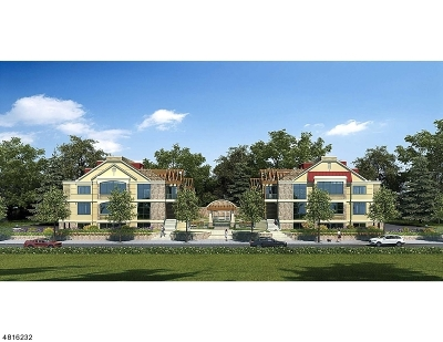 Essex County, Morris County, Union County Condo/Townhouse For Sale: 82 Franklin Pl Unit D #D