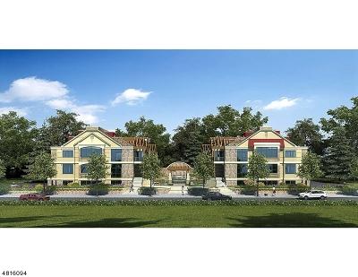 Essex County, Morris County, Union County Condo/Townhouse For Sale: 82 Franklin Place Unit C #C