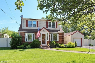 Mountainside Boro Single Family Home For Sale: 184 Mill Ln