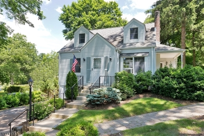 Chatham Twp. Single Family Home For Sale: 12 Long Hill Ln