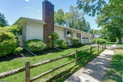 Cranford Twp. Single Family Home For Sale: 1109 Springfield Ave