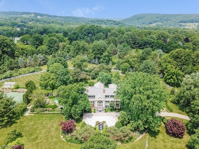 Tewksbury Twp. Single Family Home For Sale: 66 Potterstown Rd
