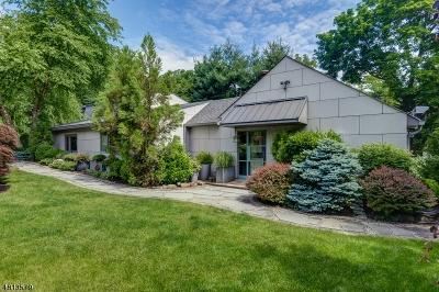 South Orange Village Twp. Single Family Home For Sale: 293 Melrose Pl