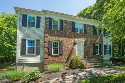 Randolph Twp. Single Family Home For Sale: 53 Forrest Rd