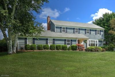 Peapack Gladstone Boro Single Family Home For Sale: 4 Pfizer Dr
