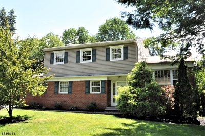 Parsippany-Troy Hills Twp. Single Family Home For Sale: 185 Intervale Rd