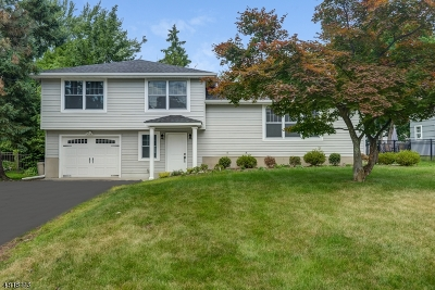 Livingston Twp. Single Family Home For Sale: 69 Sykes Ave