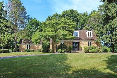 Scotch Plains Twp. Single Family Home For Sale: 9 Green Hickory Hl