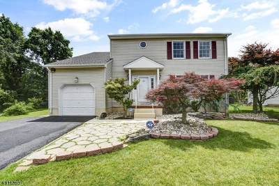 North Brunswick Twp. Single Family Home For Sale: 27 Princess Dr