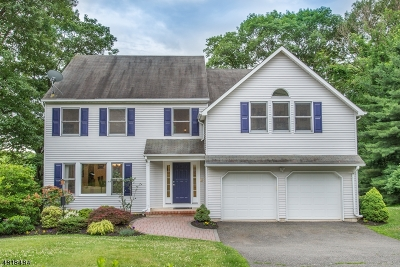 Randolph Twp. Single Family Home For Sale: 21 Parkview Rd