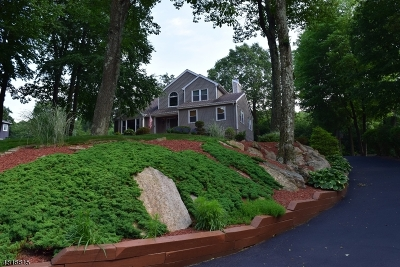 Randolph Twp. Single Family Home For Sale: 7 Block Ct