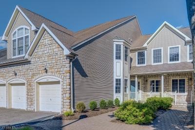 Livingston Twp. Condo/Townhouse For Sale: 703 Binghampton Ln