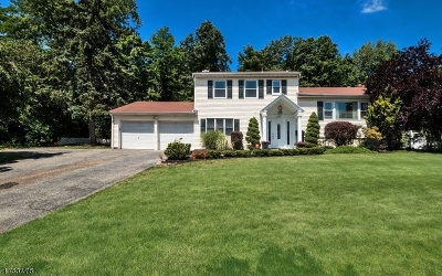 West Orange Twp. Single Family Home For Sale: 1087 Pleasant Valley Way