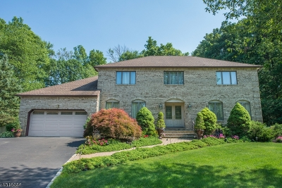 East Hanover Twp. Single Family Home For Sale: 20 Lorie Dr