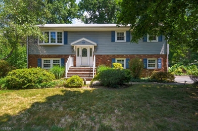 North Brunswick Twp. Single Family Home For Sale: 1465 Thomas Ave
