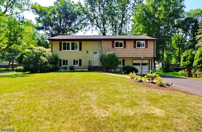 Livingston Twp. Single Family Home For Sale: 14 Balmoral Dr