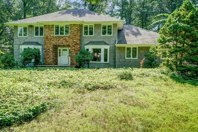 Parsippany-Troy Hills Twp. Single Family Home For Sale: 7 Waterloo Dr