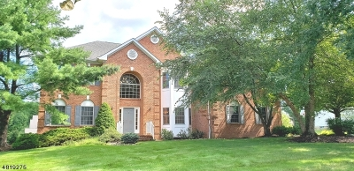 WARREN Single Family Home For Sale: 54 E Briarwood Dr