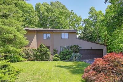 Scotch Plains Twp. Single Family Home For Sale: 11 Peach Court