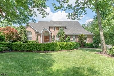 Livingston Twp. Single Family Home For Sale: 28 Chelsea Dr