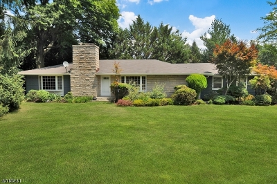 Edison Twp. Single Family Home For Sale: 322 Rahway Rd