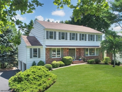 Morris Twp. Single Family Home For Sale: 16 Canterbury Way
