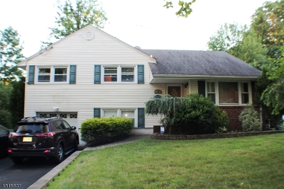 Springfield Twp. Single Family Home For Sale: 11 Lynn Dr