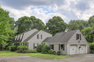 Peapack Gladstone Boro Single Family Home For Sale: 45 Old Chester Rd