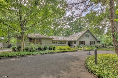 Livingston Twp. Single Family Home For Sale: 17 Camelot Dr