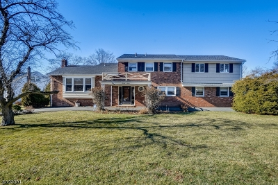 Springfield Twp. Single Family Home For Sale: 27 Mohawk Dr